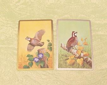 Two bird single swap playing cards