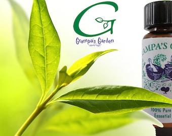 TeaTree Pure Plant Essential Oil 1/4 oz.