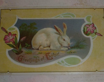 White Rabbit and Pink Lilies Antique Easter Postcard