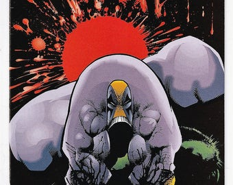 The Maxx 1 NM- 1st Printing Sam Kieth Image Comics Book March 1993 Modern Age Birthday Christmas Gifts for Him Her