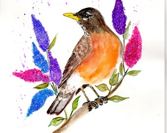 American Robin Watercolor Painting on a Lilac Branch