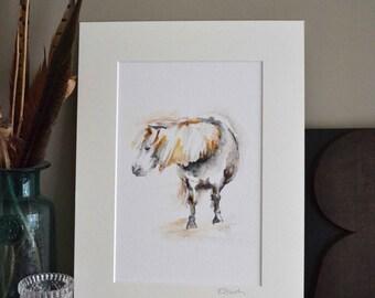 Pony print, Watercolour Pony Wall Art, Shetland pony, Horse Illustration