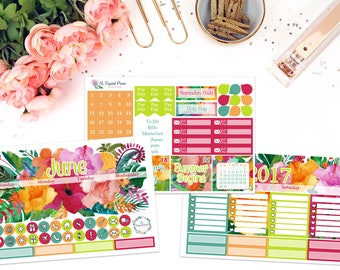 June Monthly Planner Kit || for use with ERIN CONDREN LIFEPLANNER™.
