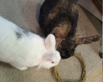 3 Organic Wood Chew Snack Toy For Bunny Rabbit