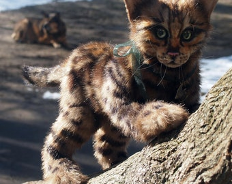 For example. Bengal cat in the style of nature