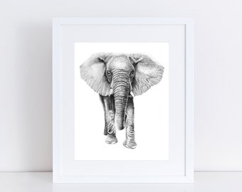 Elephant Illustration Print, Graphite Pencil Realistic Drawing Of Safari Animal Africa Elephant