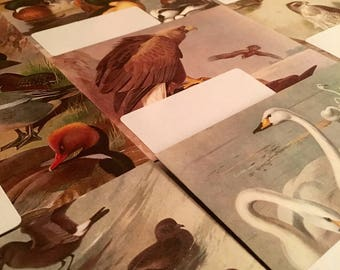 Handmade Envelopes Thorburn's Birds Letter Writing Set Pack of 5