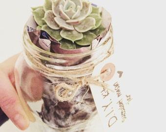 Terrarium Kit, Succulents, Mason Jar,  Mason Jar Terrarium, Mason Jar Plant, DIY Terrarium Kit, Gift for Her