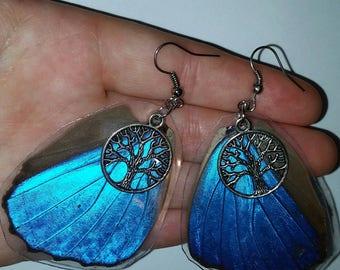 Tree of life Blue Morpho Butterfly wing earrings