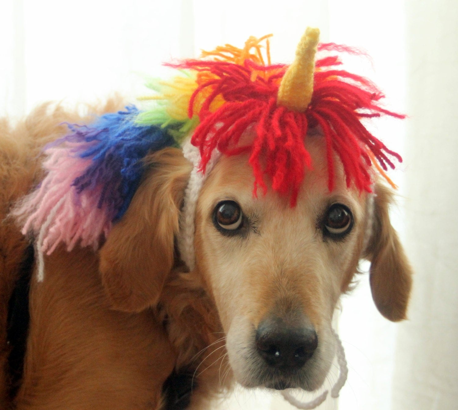 unicorn costume for dogs unicorn mane and horn for large breed dogs halloween costumes