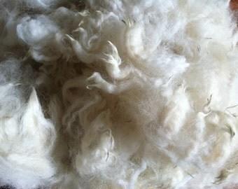 Alpaca Fleece - Carlyle 1 lb