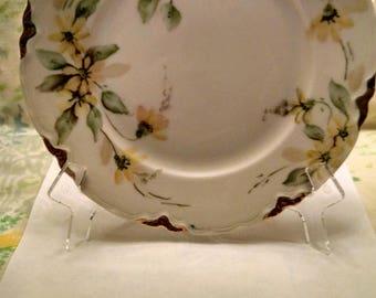 Vintage Hutschenreuther Selb China Salad/Desert Plate