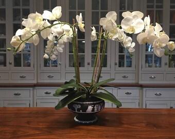 Faux Silk White Phalaenopsis Orchid Arrangement in Genuine Black Basalt Wedgwood Bowl (Artificial)