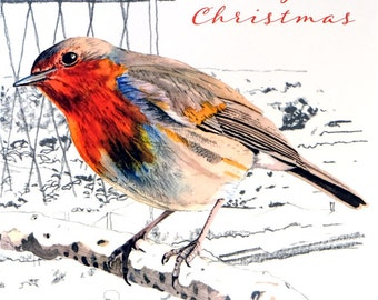 Christmas Robin Pack of 6 Cards