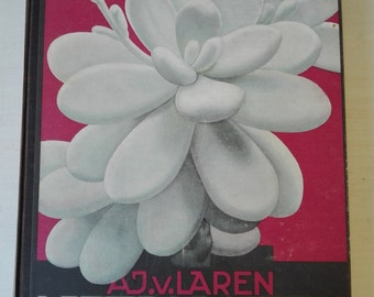 Verkade Album , vetplanten  (succulents) year 1932