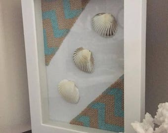 Framed seashells shadow box beach décor