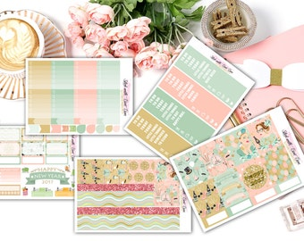 New Year 2017 weekly kits planner stickers || Erin Condren planner vertical layout