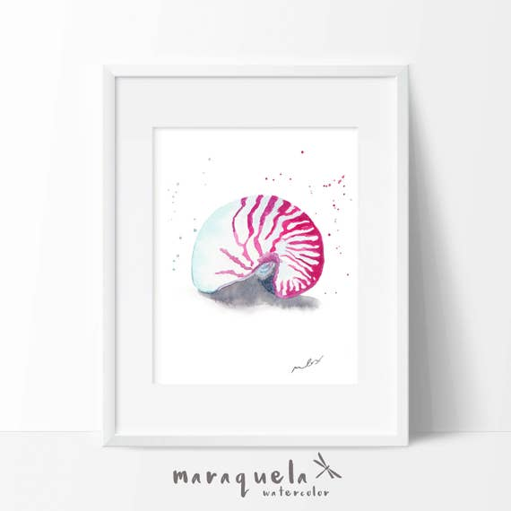 SEASHELL illustration in Watercolor,home decor. Decoration ideas bathroom, homedecor, marine life, sea, beach , gift bath, pink colors wall