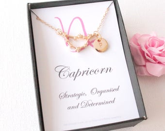 Gold capricorn  necklace, capricorn gift, capricorn pendant, capricorn star sign, Aries sign necklace, astrology necklace