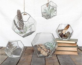 Hanging Glass Terrarium, Bubble Glass Terrarium, Hanging Terrarium, Dodecahedron Glass Terrarium, Geometric Terrarium