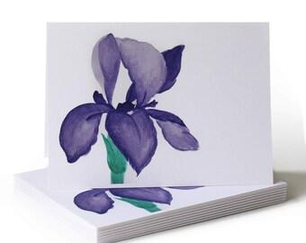 Spring Iris Just Because Greeting Card