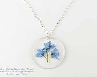 Blossom chain forget-me-not