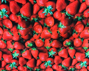 Strawberry fabric, photography style fabric, summer fruit fabric, fruit fabric, novelty fabric, summertime, strawberries, food fabric