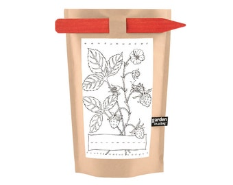 Kids Strawberry Garden-in-a-Bag – Self Contained Grow Kit – Eco Friendly – Children Gift – Party Favors – Mothers Day – Kitchen - Indoor