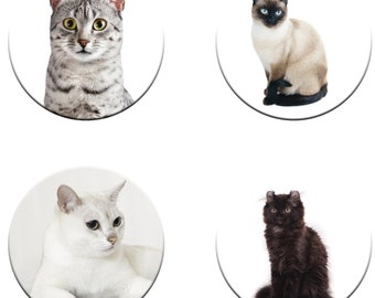 A pack of 4 assorted cats weights Ideal for weighing down patterns on delicate fabrics no need for pins like TV sewing Bee