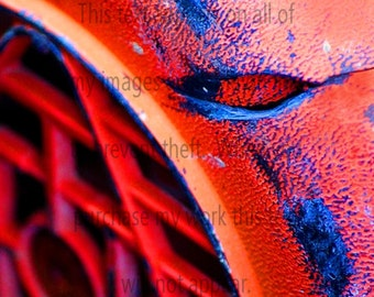 Macro Photgraphy_Man Cave_Orange 4_Macro Photography_Giclee Print