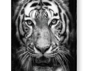 Monochrome Tiger Photo Canvas Box Art A4, A3, A2, A1 ++