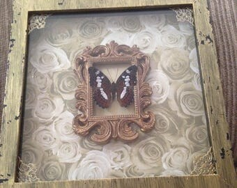Gold Distressed Spread Butterfly Display