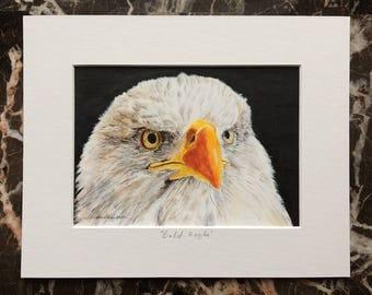 Bald Eagle original acrylic painting, bird painting, bird art, raptor art, american eagle, patriotic art, Americana home decor, 4th of July