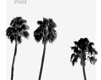 Download of Palm trees in black and white, palm leaf, print, black and white décor, tropical