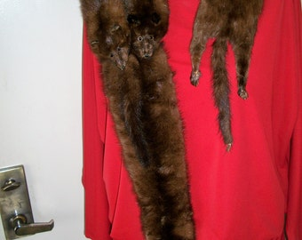 Vintage 1920's Antique Reddish Brown Fox Fur 4 Full Body Pelts Wrap Stole Collar Shawl With Tails Paws & Glass Eyes. Old Glamour.