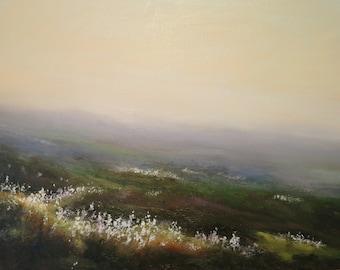 Cotton  Grass  Moorland in  Mist above Crag Vale. West Yorkshire