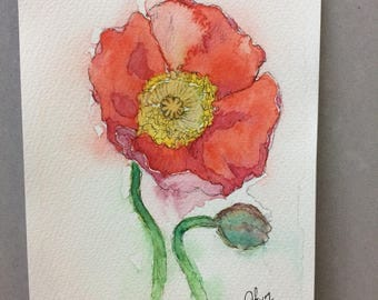 Orange red poppy- loose style