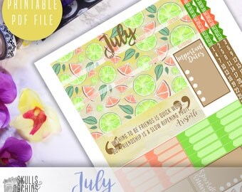 50% OFF! HAPPY PLANNER July Monthly View Kit – Printable Planner Stickers