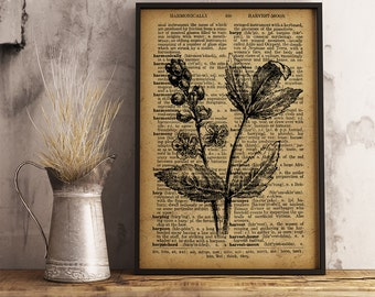 Rustic Flower Print, Flower Dictionary Art Print, Botanical Illustration, Vintage Wall Art, Nature botanical print, Office Decor (F01)