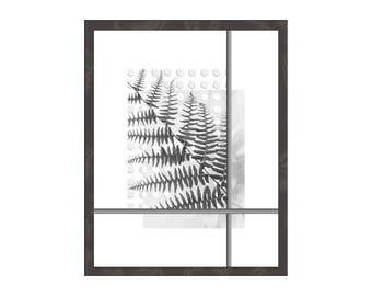 Botanical Art Print, Fern Modern Interior Decor, Contemporary Minimalist Nature Black and White, Poster Wood Panel Canvas, Pacific Northwest