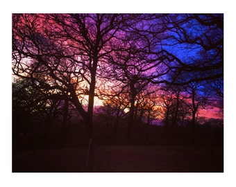 Colourful Evening Winter Sky Photograph