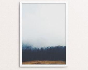 Forest art, forest prints, forest poster, forest landscape, fog forest, tree, forest photo, Forest Wall Print, printable art, digital prints