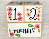 Baby Age Blocks - Baby Milestone Blocks - Baby Photo Props - Baby Girl - Monthly Baby Blocks - Baby Accessories - Baby Gift - Nursery Decor