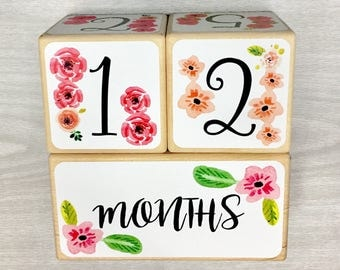Baby Girl - Baby Age Blocks - Baby Milestone Blocks - Baby Photo Props - Monthly Baby Blocks - Baby Accessories - Baby Gift - Nursery Decor