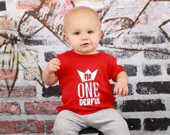 Boy first birthday, boy first birthday shirt, mr onederful shirt, onederful, onederful bodysuit, boy first birthday bodysuit, first birthday