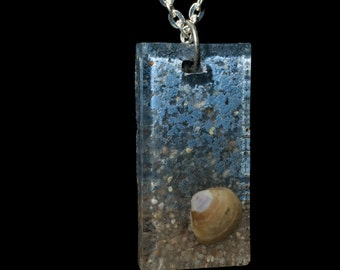 Shell necklace, pendant,  Beach necklace, shell pendant, epoxy jewelry