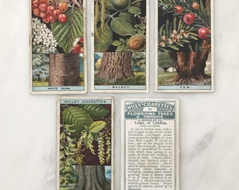 Set of 5 1920s Cigarette Cards British Flowering Trees & Shrubs Paper Ephemera Collectable Cards