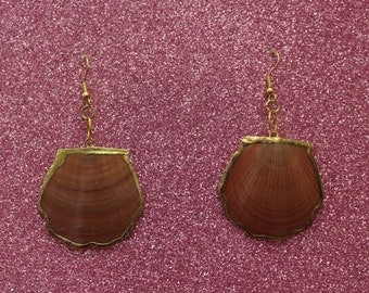Pink Shell Earrings