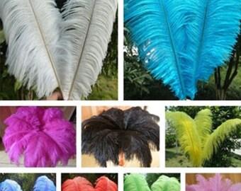 Wholesale ostrich feather 45-50CM 100PCS 12 color optional wedding party feather DIY