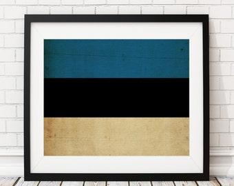Estonia Flag Art, Estonia Flag Print, Flag Poster, Country Flags, Estonia Poster, Wall Art, Housewarming Gifts, Wall Decor, Flag Painting
